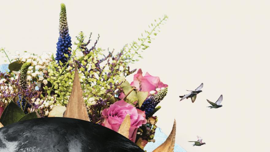 Extracto de la imagen de la Temporada 20/21
