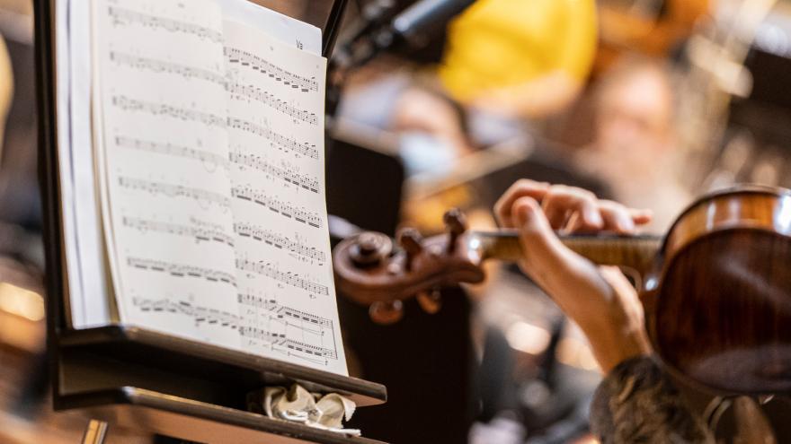 Euskadiko Orkestra saca a concurso una plaza de concertino y dos de viola tutti